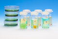 Samples in plastic vials for microscopy and biopsy tissue. Royalty Free Stock Photo