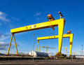 Samson and Goliath. Famous shipyard cranes in Belfast Royalty Free Stock Photo