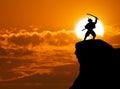Samurai on top Royalty Free Stock Photo