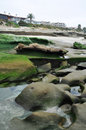 San diego la jolla rocky coast green moss historic homes california Royalty Free Stock Images