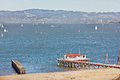 San francisco bay on a windy day Royalty Free Stock Photos