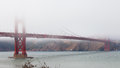 San Francisco Golden Gate Bridge tower in the fog. Royalty Free Stock Photo