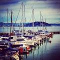 San francisco nice marina daytime Royalty Free Stock Image