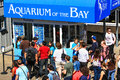 San francisco pier aquarium ticket booth summer crowds check out the of the bayticket on located at the edge of famous Stock Image