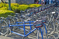 """San francisco united states july line of plenty publi public bicycles for leisure activities outdoors 'blazing saddles"""" in Royalty Free Stock Photos"""