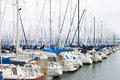 San francisco yacht port in Royalty Free Stock Photos