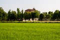 Sanctuary of varallino the paddy field and the Royalty Free Stock Image