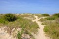 Sand Dune in Cape Hatteras, North Carolina Stock Photography