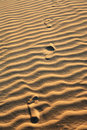 Sand dune of cumbuco footsteps on the ripples in ceara state brazil Royalty Free Stock Photos