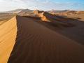 Sand dune ridge in vast desert