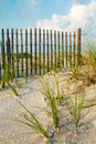 Sand Dune and Sea Grass along a fence. Royalty Free Stock Photo