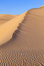 Sand dune in sunrise in the desert Stock Photography