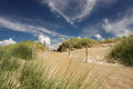 Sand dunes at the dutch coast hiking path through Royalty Free Stock Images