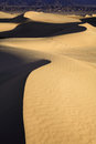 Sand dunes early morning light on in death valley national park california Royalty Free Stock Images
