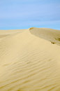 Sand dunes golden curved dune with blue sky Stock Photos