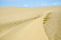 Sand dunes golden curved dune with blue sky Royalty Free Stock Photo