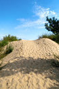 Sand dunes in the lithuania on beach Stock Images