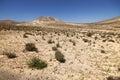 Sand dunes and mountains near Sotavento beach on Jandia peninsul Royalty Free Stock Photo