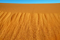 Sand dunes in the sahara desert bug tracks merzouga morocco Royalty Free Stock Photography