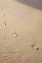 Sand footprints Royalty Free Stock Photos