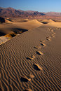 Sand footsteps Royalty Free Stock Photo