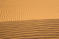Sand horizon in kelso dunes forms a golden Royalty Free Stock Photo