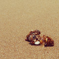 Sand old vintage retro style with filter effect Stock Photo