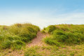 Sand path over dunes with beach grass cedar provincial park prince edward island canada Stock Photography