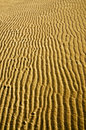 Sand ripples background photo of beach Royalty Free Stock Image