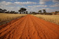 Sand road in kalahari desert Stock Photography