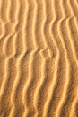 Sand snakes light and shadow create in desert Stock Photos