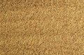 Sand texture as a background Royalty Free Stock Photo