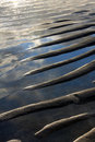 Sand waves in shallow water Royalty Free Stock Photo