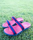 Sandals or Flip Flop On Grass Stock Photo