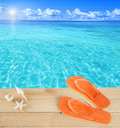 Sandals by a tropical pool and shells Stock Images