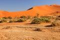 Sanddunes Namibia Royalty Free Stock Photo