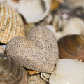 Sandheart and shells Royalty Free Stock Photo