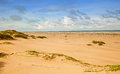 Sandunes South Padre Island Stock Image