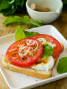 Sandwich for breakfast Stock Images