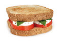 Sandwich caprese with alhabaca on white background Royalty Free Stock Image