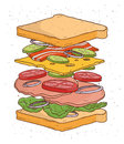 Sandwich concept ingredients. Bread, salad, tomato, cheese, bacon, onion, Colorful hand drawn vector illustration.