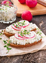 Sandwich with cottage cheese and radish black pepper thyme Royalty Free Stock Image