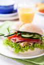 Sandwich with fresh vegetables, ham and cheese Royalty Free Stock Photos