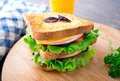 Sandwich with ham cheese tomatoes and lettuce salad on toasted bread Stock Images