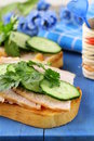 Sandwich with ham and cucumber Royalty Free Stock Photo