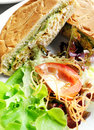 Sandwich meal with fresh salad Royalty Free Stock Photo