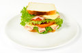 Sandwich on the plate Royalty Free Stock Photo