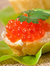 Sandwich red caviar butter cucumber Stock Photography