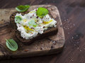 Sandwich with soft cheese, olive oil and basil, served on olive cutting board on dark wooden surface. Royalty Free Stock Photo