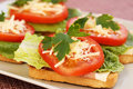 Sandwiches with bacon lettuce tomato and cheese on plate Stock Photo